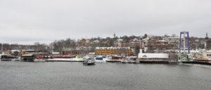 """Djurgården med Liljevalchs, Pettersonska huset och Gröna Lund Här vill Parks & Resort bygga berg- oh dalbanor till den dubbla höjden av """"Insane"""" som ses i högra delen av bilden."""
