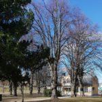 Annedal. Bakom den lilla gården planerar Solnas m-ledda majoritet det stora kontorshuset.