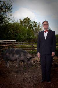 Grisens liv och historia, med grisbesök och guidad tur!
